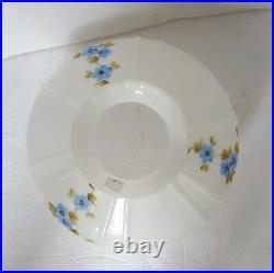 Hand Painted Aladdin Glass Oil Kerosene Replacement Lamp Shade 9.75 Fitter